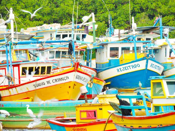 Barcos no Rio Benevente