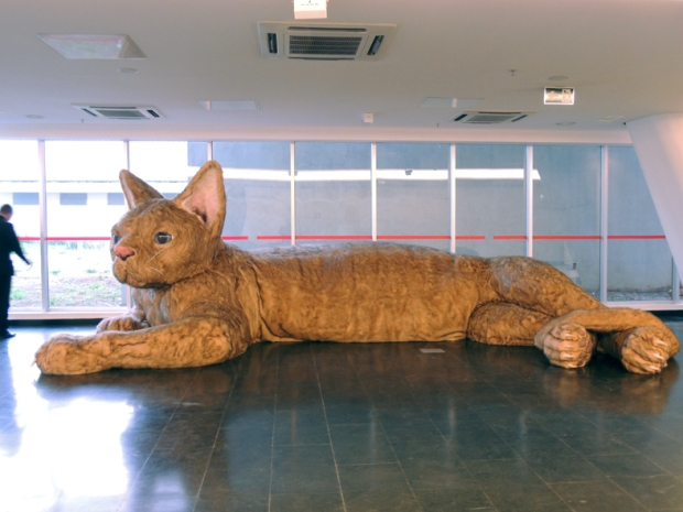 Quero ver este segurança jogar uma bola de lã para este gatinho.