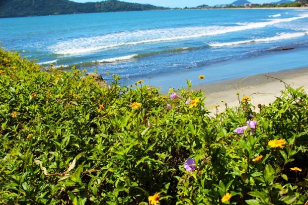 Praia de Iperoig, ou Cruzerio, Centro de Ubatuba