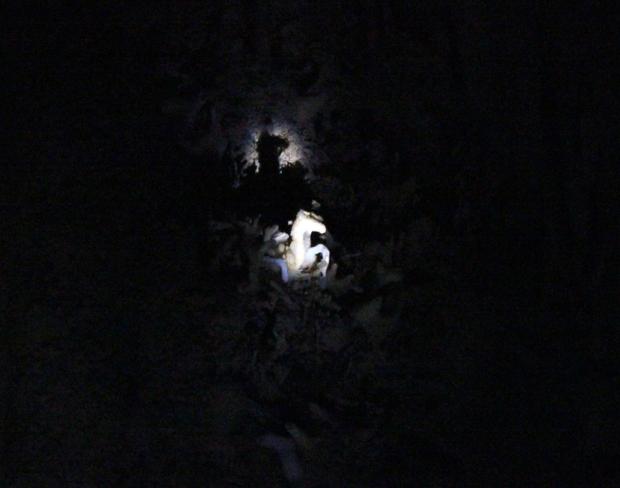 A imagem é pequena, mas São Jorge Guerreiro, montado em seu cavalo branco prendem o coisa ruim dentro da Caverna do Diabo. De lá ele não sai!