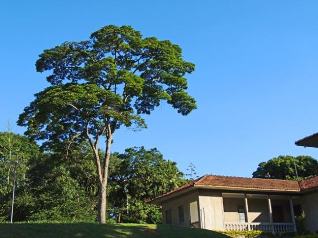 administracao-jardim-botanico