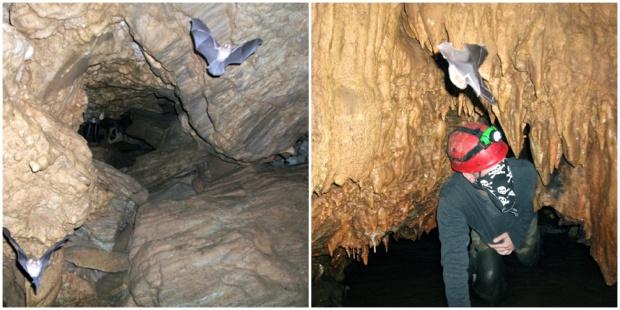 caverna morcego bussola quebrada itaoca