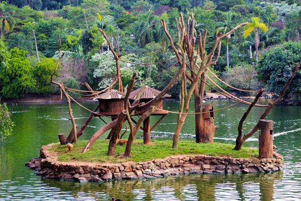 ilha-lago-casa-macaco-zoologico
