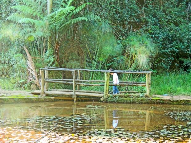 ponte-lago-travessia