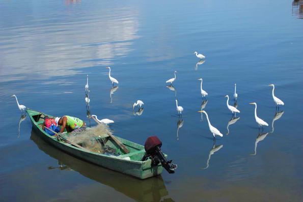 barco-pesca-pesqueiro-pedra-de-guaratiba