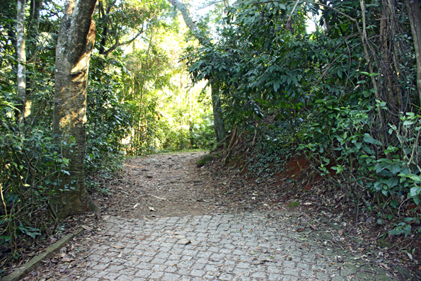 trilha-de-terra-pai-ze-pico-jaragua