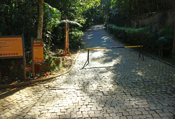 trilha-pai-ze-pico-jaragua