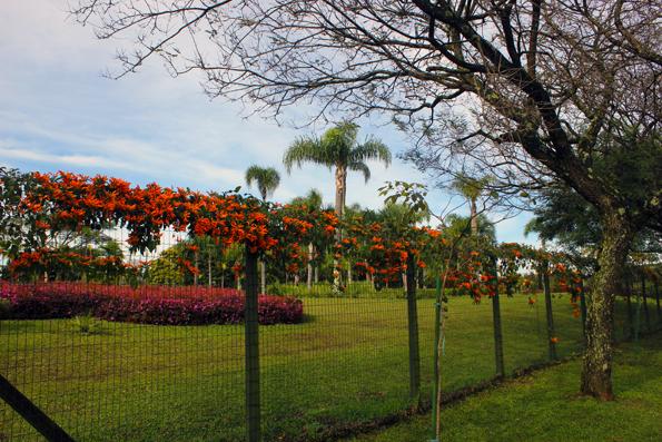 cerca-Jardim-Botanico-Curitiba