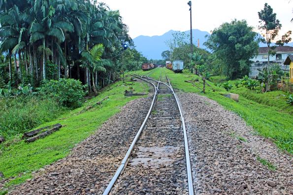 trem-trilhos-morretes