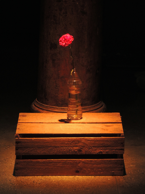 memorial-da-resistencia-flor-luz