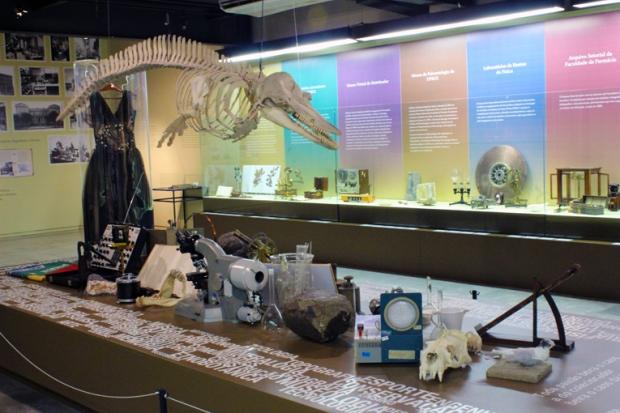 exposição museu da UFRGS