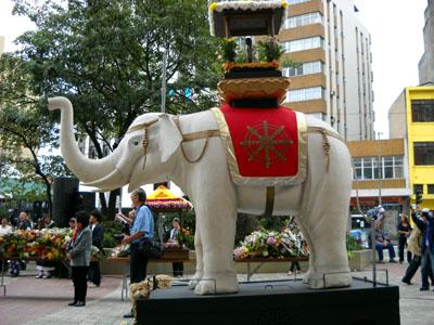 hanamatsuri-elefante