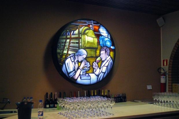 As etapas do processo de fabricação dos vinhos, testes de qualidade e a nossa degustação.