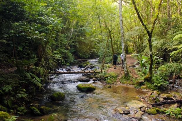 rio-cachoeira-de-meu-deus-trilha