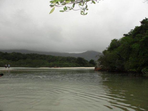 Onde o mangue encontra o mar.