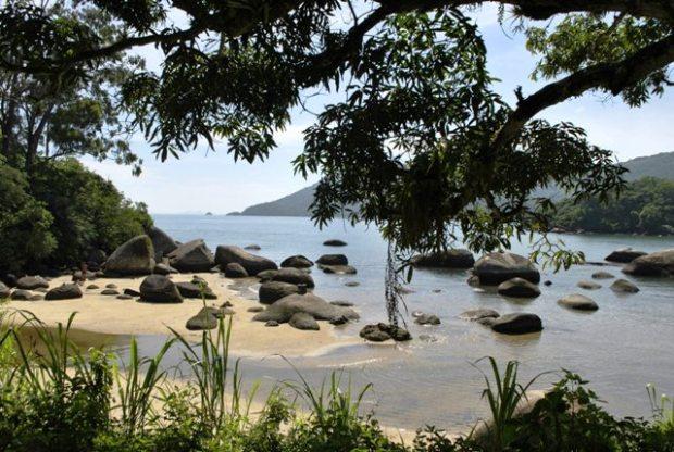 Surpresinhas no caminho. Não sei exatamente qual praia é essa.