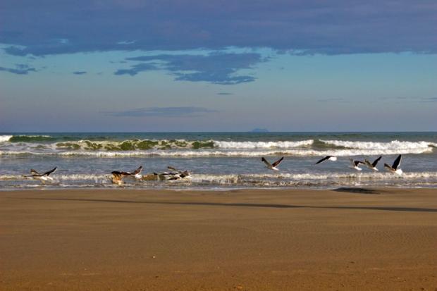 praia-gaivotas-itanhaem-a-bussola-quebrada