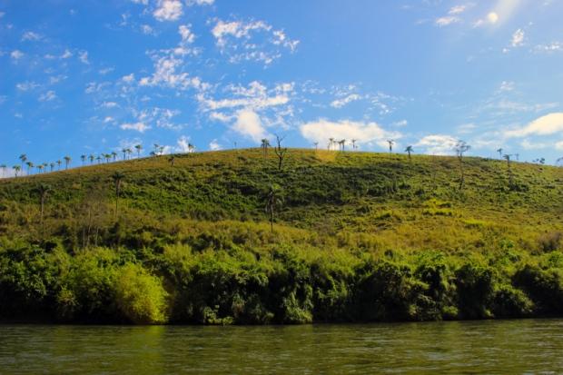 paisagem-sobrevivencia-selva-a-bussola-quebrada