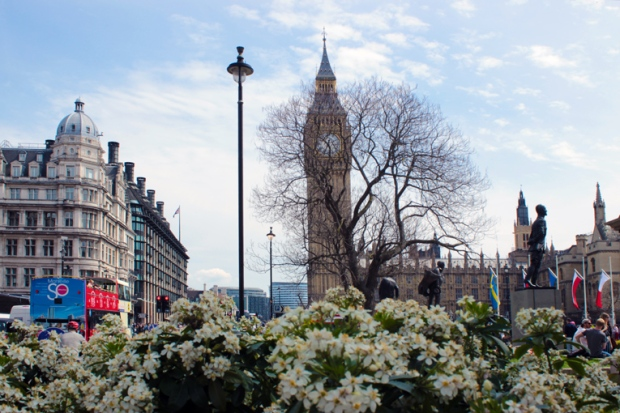 flores-big-ben-parliament-square-casas-do-parlamento-a-bussola-quebrada