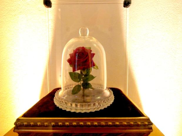 rosa-pequeno-principe-mosteiro-sao-bento-a-bussola-quebrada