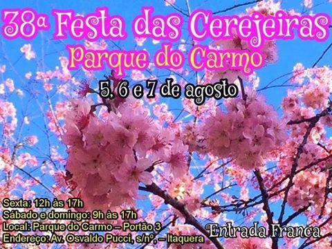 38-festa-das-cerejeiras-carmo-sao-paulo