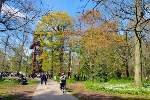 Treetop Walkway-caminho-no-ceu-kew-gardens-a-bussola-quebrada