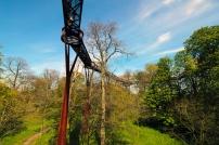 A Treetop Walkway – Para andar no topo das árvores.