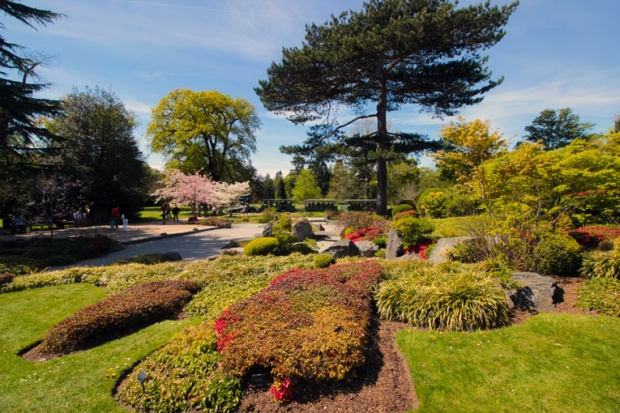 jardim-japones-kew-gardens-a-bussola-quebrada