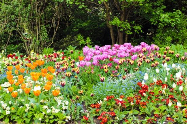 troca-da-guarda-flores-buckingham-canteiro-a-bussola-quebrada