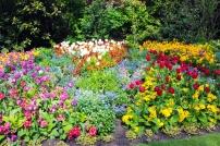 troca-da-guarda-jardim-buckingham-a-bussola-quebrada