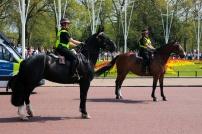 Polícia feminina montada.