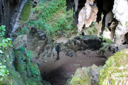A caverna Teminina tem uma floresta dentro dela.