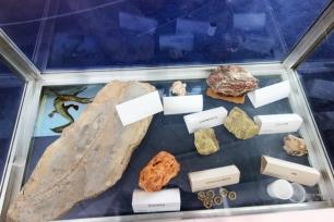 Pedras, fósseis e informações bem guardadas.