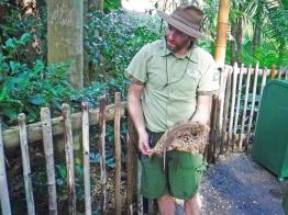 Um dos guias explicando a camuflagem dos animais.