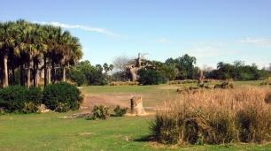 A paisagem é um habitat funcional para as espécies.