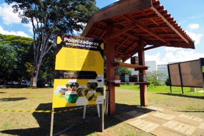 Placa com informações sobre o cafezal do Instituto Biológico.