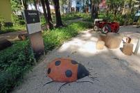 A Joaninha gigante no quintal do Planeta Inseto.