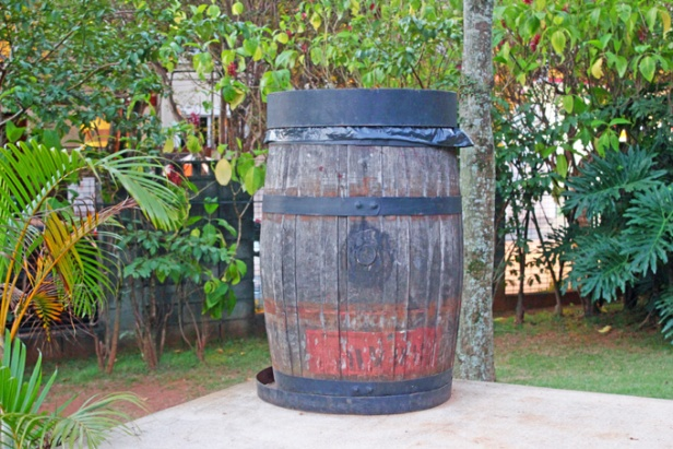 O cesto de lixo lembra um famoso personagem.