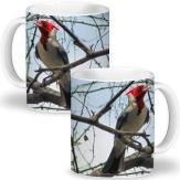 Café da manhã ou chá da tarde com o cardeal.