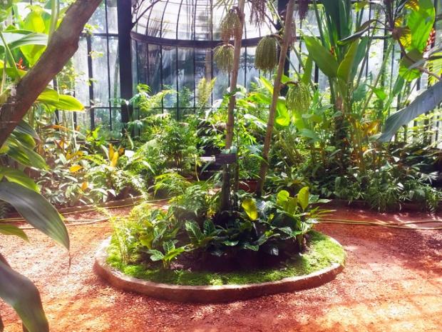 Uma das estufas do Jardim Botânico de Buenos Aires.