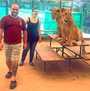 """Juro que aquela leoa está rindo como quem diz: """"Oba! Um prato caprichado hoje!"""""""