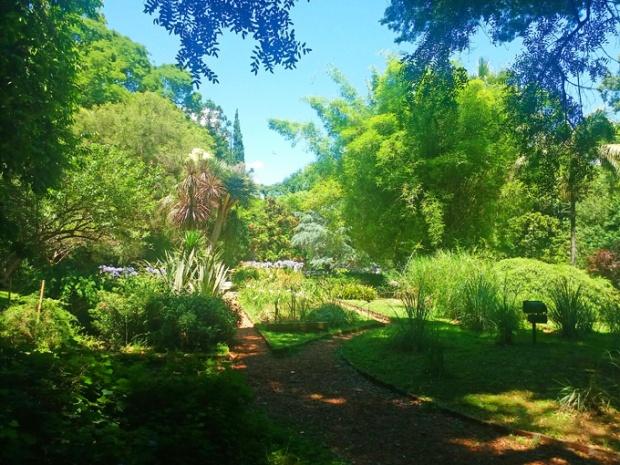 O Jardim Botânico de Buenos Aires. Para quem gosta de natureza e lugares bonitos.