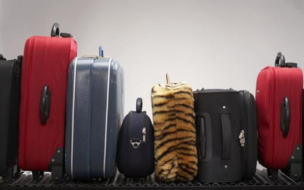 Sabe identificar sua mala no meio de tantas?