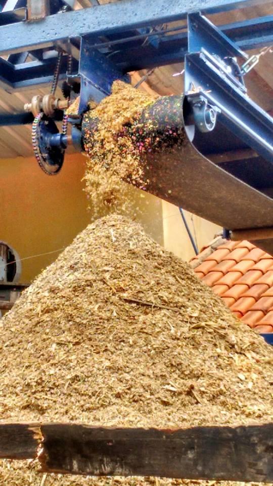 Moagem da cana de açúcar e extração do caldo de cana.