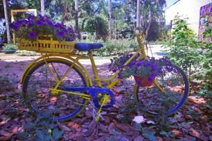 Bicicleta com flores.