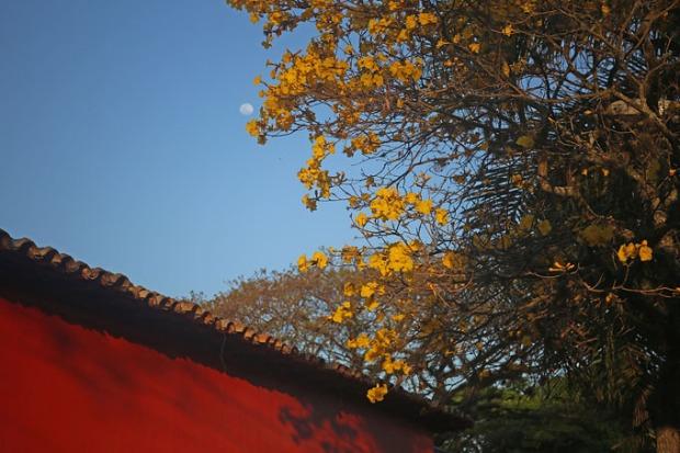 Fim de tarde com por do sol e lua no céu azul.