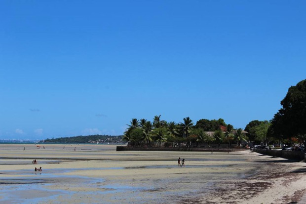 O mangue, que recebe vários rios. Foto: Hirlei Gonçalves.