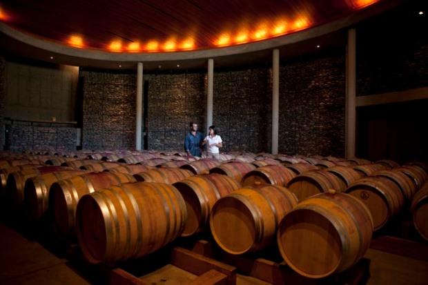 Região das vinícolas tem tours para degustações e acompanhamento do processo de produção dos vinhos.