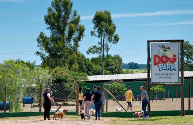 Dog Park no Brotas Eco Resort